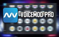 Voicemod-Pro-